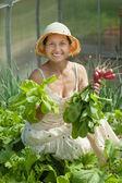 Smiling woman picking radish — Stock Photo