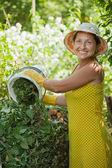 Farmer composting grass — Stock Photo