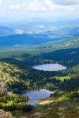 Monti altai. russia — Foto Stock