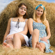Pretty girls  resting on hay - Stock Photo
