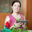 Woman with various seedlings — Stock Photo #7599321