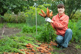 Woman with carrot harvest — Stock Photo