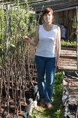 Kobieta z sadzonki drzew — Zdjęcie stockowe