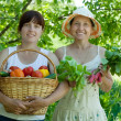 Royalty-Free Stock Photo: Two  women with vegetables harvest