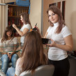 Hairdresser dye  long-haired girl - Foto Stock