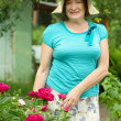 Woman in peony plant — Stock Photo