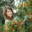 Woman in seabuckthorn plant — Stock Photo