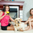 Stock Photo: Women with labrador retriever