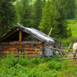 Stock Photo: Wooden house in wildness