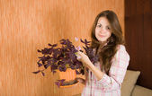 Woman with oxalis in pot — Stock Photo
