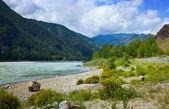 Mountains river — Stock Photo