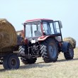 Royalty-Free Stock Photo: Agriculture - tractor carries a haystack