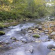 Panorama of a wild river in autumn — Stock Photo