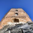 Tower of Gediminas — Stock Photo