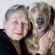 Stock Photo: Senior woman and dog