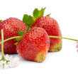 Strawberry — Foto de stock #7172285