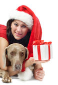Young woman,dog with gift — Stock Photo