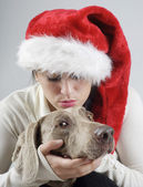 Young woman,dog — Stock fotografie