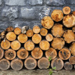 Pile of firewood — Stockfoto #6777385