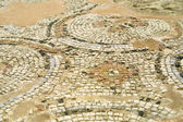 Fragmento de mosaico antiguo en kourion, Chipre — Foto de Stock