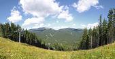 Bukovel ski resort in summer, Carpathians, Ukraine — Stock Photo