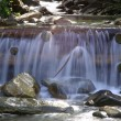 Cascade in Carpathian forest, Ukraine — Stock Photo #6987200