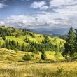 Mountains landscape in Carpathians, Ukrain — Stock Photo #7309308