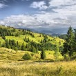 Mountains landscape in Carpathians, Ukrain — Stock Photo