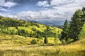 Paisaje de las montañas de los cárpatos, ukrain — Foto de Stock