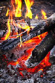 Close-up wooden campfire with burning coals — Stock Photo