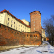 Royal Wawel Castle in Krakow, Poland — Stock Photo