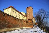 Wawel royal castle krakow, polonya — Stok fotoğraf