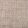 Stock Photo: Cross-stitch canvas texture