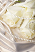 Pearl beads and cream rose — Stock Photo