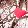 Stock Photo: Red heart on snow tree