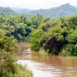 River in jungle, Thailand - Stock Photo