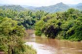 River in jungle, Thailand — Stock Photo