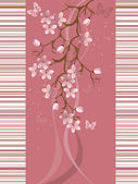 Sakura květu, vektorové ilustrace — Stock vektor