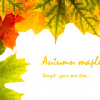 Autumn card of colored leafs — Stock Photo #7120950