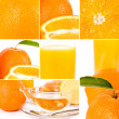 Royalty-Free Stock Photo: Oranges set