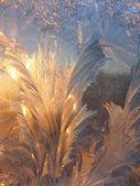 Patrón de hielo y la luz del sol sobre el vidrio de invierno — Foto de Stock