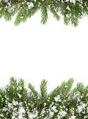 Christmas framework — 图库照片
