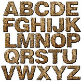 Wooden alphabet. — Stock Photo