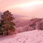 Snowy landscape. — Stock Photo