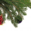 Christmas tree — Stock Photo #7221996