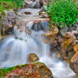 Stock Photo: Creek waterfall
