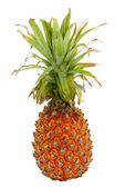 Ananas, samostatný — Stock fotografie