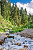 River mountain — Stock Photo