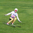 Skier landed on the turf — Stock fotografie