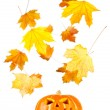 Halloween, old jack-o-lantern on white — Stock Photo #7019148
